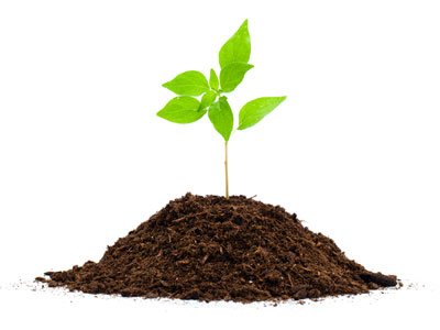 What makes soil hard and compacted?