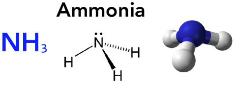 Various ways to represent the ammonia molecule including the chemical formula, 2D structure and ball-and-stick model