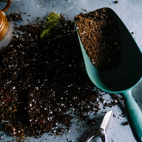 Scoop of potting soil