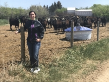 Chelsey Peutert | Agricultural Environmental Engineer