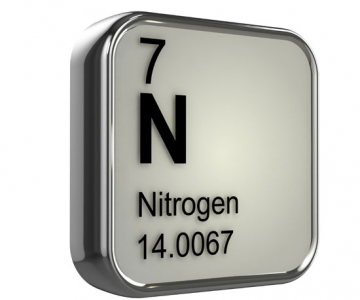 The Nitrogen Cycle. Image © NH Animations