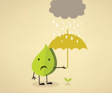Cartoon leaf holding an umbrella over baby plant