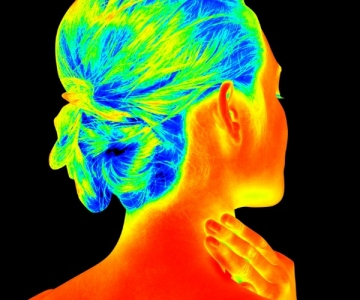 hermographic image a woman's head and neck