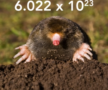 A mole and the number of atoms or molecules in a mole