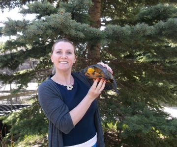 Nia Gibson with Collin, a Blanding's Turtle who is between 30 and 80 years old