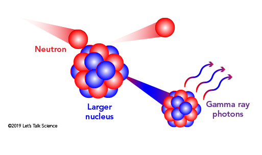 When a neutron strikes a larger nucleus through an inelastic collision, the energy gained by the nucleus is released as Gamma ray photons.