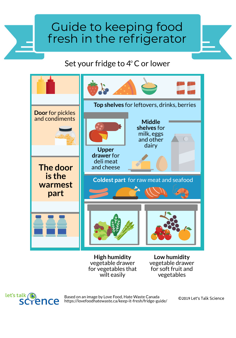 The best places to store food in the refrigerator