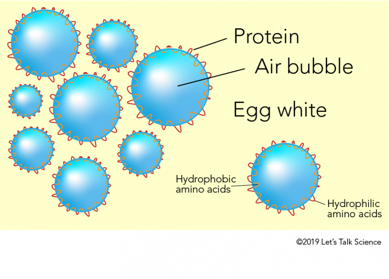 Bubbles in egg whites
