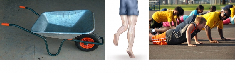 Second class levers are used in wheelbarrows (left), when going on tiptoes (centre) and when doing push-ups