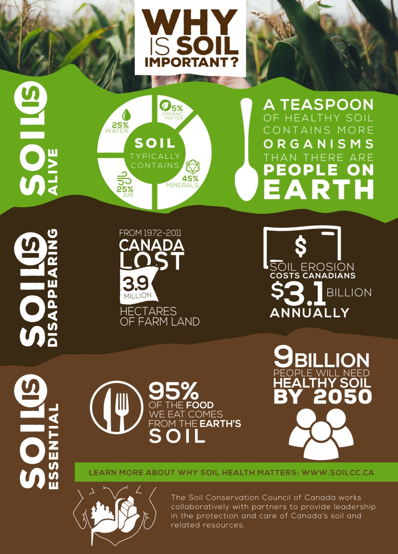 Infographic which shows why soil is important