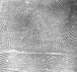 How can I take fingerprints?