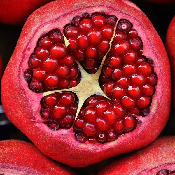 Seeds of a pomegranate fruit