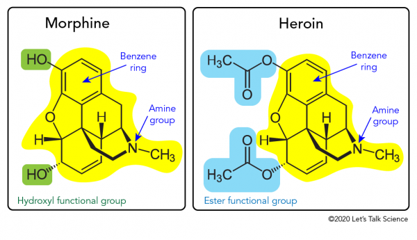 Chemical structures of morphine and heroin