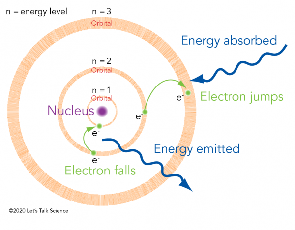 Bohr model showing an electron jumping to a higher energy level and falling to a lower energy level