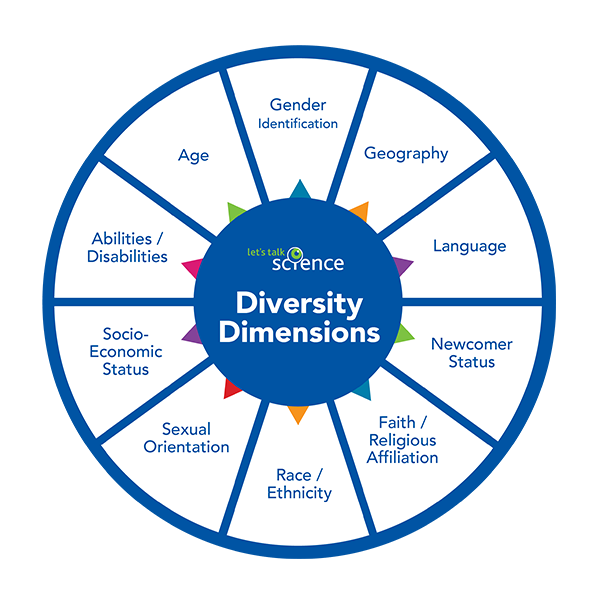 Diversity dimension graphic